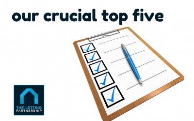 Five critical points for letting agent